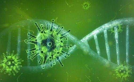 تصورات غلط در مورد ویروس کرونا